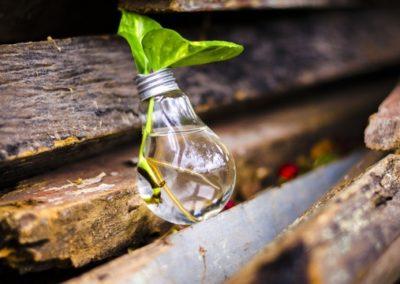 Gestione di aspetti ambientali